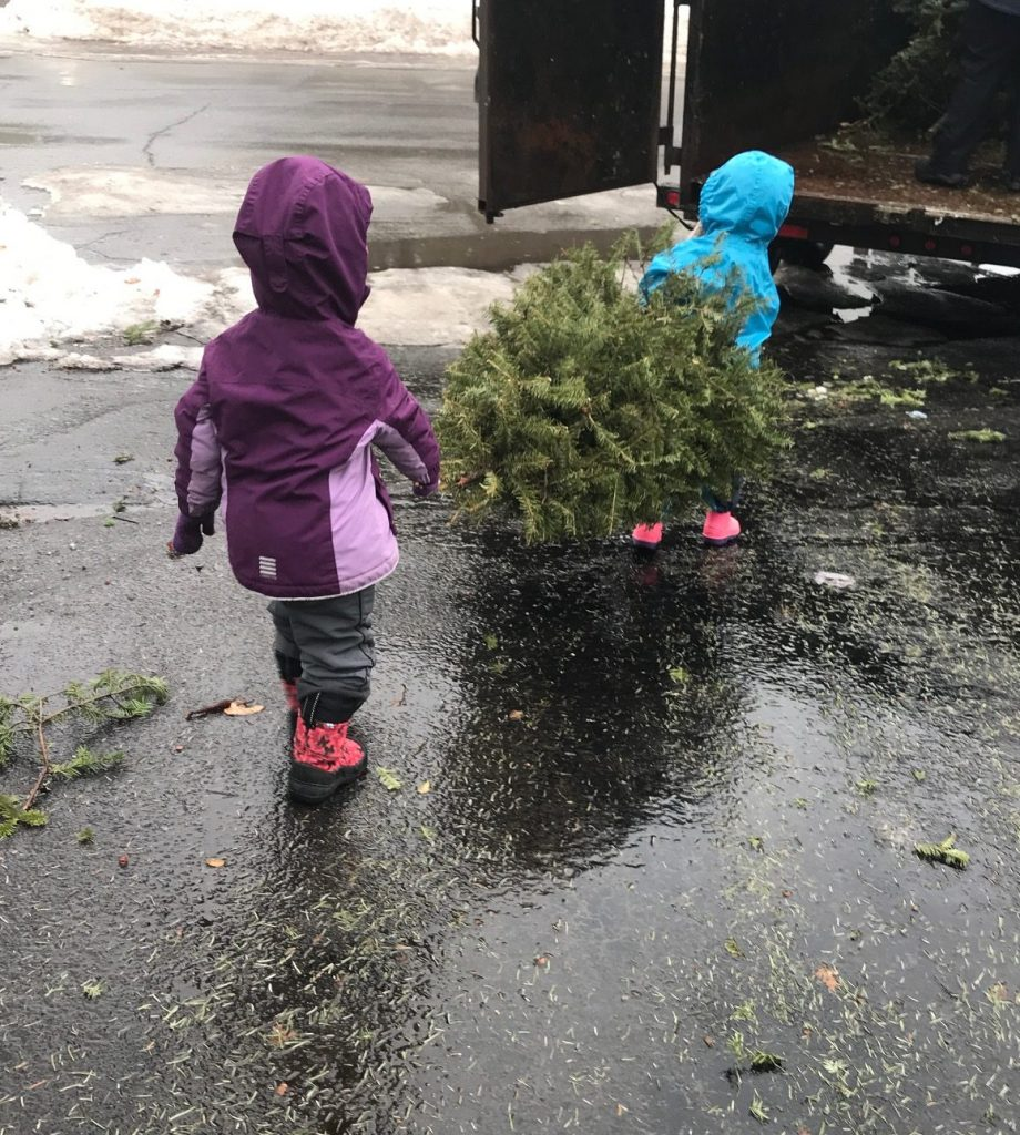 Eager helpers loading X-mas trees